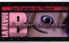 La revue Bancal - Les camps de l'Amor de David Noir
